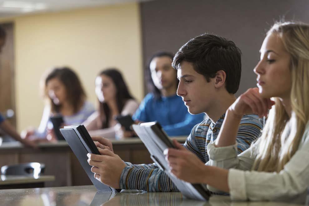 La enseñanza de la Historia en educación secundaria. Problemas y propuestas.